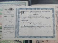ALGÉRIE: ANCIENNE ACTION . ''ENTREPÔTS FRIGORIFIQUES  ALGÉRIENS''  1942 (2 SCANS) RRR - Industry