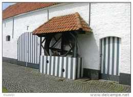 OPDORP Bij Buggenhout (O.Vl.) - Molen/moulin - Mooie Prentkaart Van De Botermolen (hondenmolen) Bij De Valkenhoeve - Buggenhout
