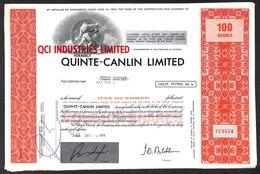 Lot De 2 Titres QCI Industries Ltd, Quinte-Canlin Ltd, 100 Shares, 1975 - Actions & Titres