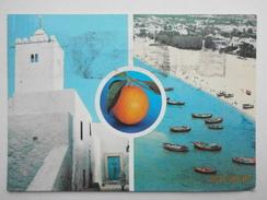 Postcard Hammamet Tunisia Tunisie PU 1981 My Ref B21802 - Tunisia