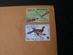 Nicaragua Birds On Cv, 1990  One WWF - Nicaragua