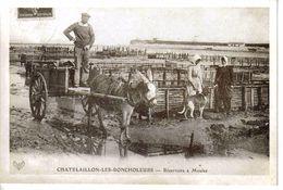 17 Chatelaillon N°97 Le Boucholeurs Réservoirs à Moules Ane Chien Collection Ch.Genet - Châtelaillon-Plage