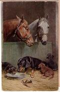 Reichert~PC~Dachshund Puppy Puppies Dog Dogs~Horses In Barn~T.S.N.Serie 1232 - Honden