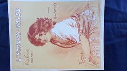 PARTITION MUSICALE-LINTSCHY-VALSE-VALSE VIENNOISE-R. DE ZINSKY- ILLUSTRATEUR LARRAMET -MAX ESCHIG PARIS 1914 - Scores & Partitions