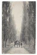 Cpa: 28  MOLEANS (ar. Chateaudun) Avenue Du Château (attelage) 1914 - Autres Communes