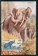 France / Togo - Carte Maximum 1955 - Animaux - Éléphants - Brieven En Documenten