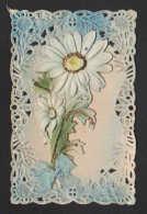 B 188 - Fantaisie       Carte  Dentelle    Fleurs Marguerites - Flowers