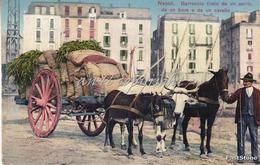 NAPOLI_Barrocio Tirato Da Un Asino,da Un Bove E Da Un Cavallo_ Originale 100%- - Napoli