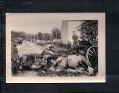ANCIENNE PHOTO MILITAIRE Soldat Au Pieds De Cadavre De Chevaux Lieu à Identifier   ( WW 2) - Documents