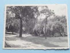 Studiehuis A.C.V. Ter NOOD Ingang Van Het Park ( Thill ) Anno 19?? ( Zie Foto Voor Details ) !! - Overijse