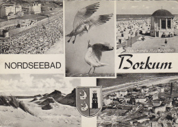 Allemagne - Nordseebad Borkum - Borkum