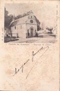 Lier Chapelle St Gommaire Souvenir De Lierre - Lier