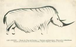 24 - LES EYZIES - Grotte De Font-de-Gaume - Peinture Préhistorique : Rhinocéros Tichorhinus - Sin Clasificación