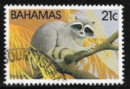 Bahamas, Scott # 516 Used Racoon, 1982 - Bahamas (1973-...)
