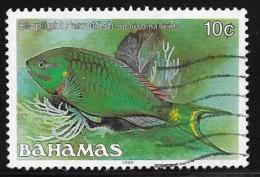 Bahamas, Scott # 605d(1988) Used Fish 1987 - Bahamas (1973-...)