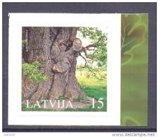2005. Latvia, Oak Tree, 1v,  Mint/** - Letland