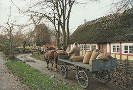 Weaver`s House From Vesterlunde. Horse Cart.  The Funen Village Denmark.   # 07107 - Museum