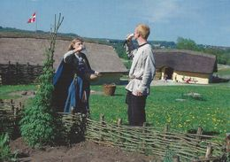 Vikingcenter Fyrkat - Hobro  Denmark.   # 07109 - Museum