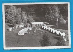 C.P.M. LAPOUTROIE - Camping International Central Olyrupus - Lapoutroie