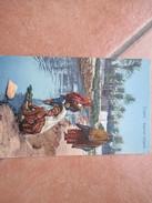 COLONIE ITALIANE Tripoli Ragazze Indigene Costumi Fiume - Libia