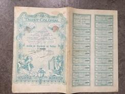 17 - Action De Dividende Au Porteur SA Trust Colonial 1899 - Afrique