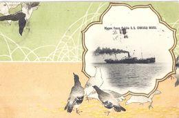 NIPPON YUSEN KAISHA S.S. CHIKUGO MARU. 1908 - Zonder Classificatie