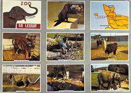 """50 - Lessay - ZOO: """"bon Pour 1 Entrée Gratuite"""": Otarie, Tigre, Guenon, Lamas, Guépard, Flamants Roses, éléphant - France"""
