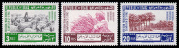 Iraq, 1963, Freedom From Hunger, FAO, Food And Agriculture Organization, United Nations, MNH, Michel 367-369 - Iraq
