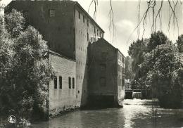 Rotselaar / Watermolen - Rotselaar