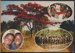 °°° 6594 - REPUBBLICA CENTROAFRICANA - MISSIONS  DES PERES CARMES - FLEURS - 2002 With Stamps °°° - Repubblica Centroafricana