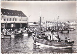 29. Gf. GUILVINEC. Le Port. 773 - Guilvinec
