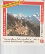 Switzerland - Rugenbrau - Berner Oberland - Schynige Platte Bahn - Sous-bocks