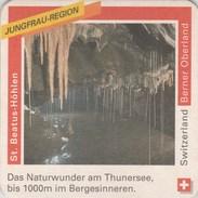 Switzerland - Rugenbrau - Berner Oberland - St. Beatus-Hohlen - Sous-bocks