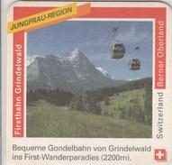 Switzerland - Rugenbrau - Berner Oberland - Firstbahn Grindelwald - Sous-bocks