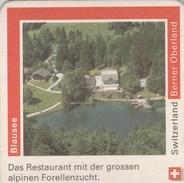 Switzerland - Rugenbrau - Berner Oberland - Blausee - Sous-bocks