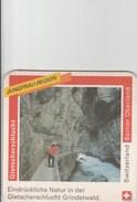 Switzerland - Rugenbrau - Berner Oberland - Gletscherschlucht - Sous-bocks
