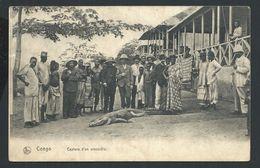 +++ CPA - Afrique - CONGO BELGE - Capture D'un Crocodile - Nels  Série 14 N° 57  // - Belgisch-Kongo - Sonstige