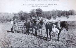 52 - Colombey Les Deux Eglises : École Pratique D'agriculture De Saint-Bon , Les élèves Au Semoir. - Colombey Les Deux Eglises