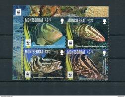 """WWF - Montserrat - MiNr. 1809 / 1812 - Satz """"Nassau-Zackenbarsch"""" ** / MNH (Jahr 2016) - W.W.F."""