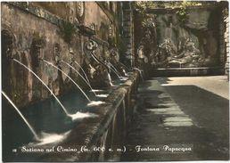 Z4591 Soriano Nel Cimino (Viterbo) - Fontana Papacqua / Non Viaggiata - Altre Città