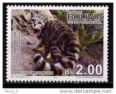 BOLIVIE - CHAT DES ANDES - LEOPARDUS JACOBITA  -   - 1 V NEUF**- CLKR23750911X - Katten