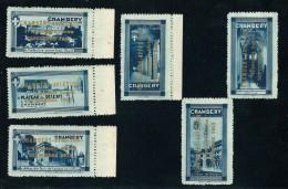 1933-CHAMBERY AVIATION 1er Service Aérien Série 6 Vignettes ** RR - Commemorative Labels