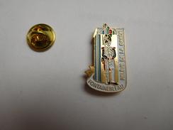 Superbe Pin's  , Armée Militaire , Reléve De La Garde , Fontainebleau - Army