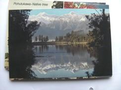 Nieuw Zeeland New Zealand Lake Matheson Westland South Island - Nieuw-Zeeland