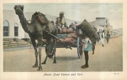 YEMEN MAALA LOAD CAMELS AND CART - Yemen