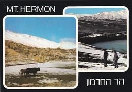 ISRAEL---RARE--MT. HERMON--multivues--voir  2 Scans - Israel