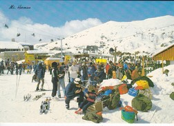 ISRAEL---RARE--MT. HERMON--the Snow Covered Slopes Of Mt.hermon--voir  2 Scans - Israel