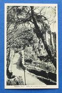 Cartolina Greccio - Salita Per Accedere Al Santuario - 1949 Ca. - Rieti