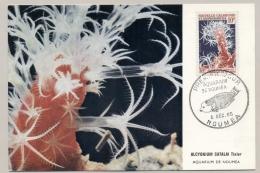 Nouvelle Caledonie - 1965 - 10F Alcyonium Catalai Tixier - Aquarium De Noumea - Fish - Marine Life