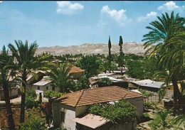 ISRAEL----JERICHO---ville Aux Palmiers--voir  2 Scans - Israel